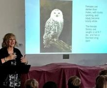 Neighborhood Art House children were treated to a picture presentation on the beautiful snowy owl.
